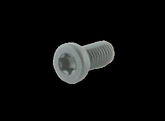 Spuhr T10 Schraube